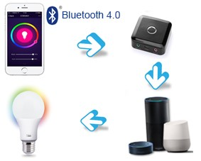 4-Working Principles of A21 Bluetooth Smart Light LED Bulb Voice Control