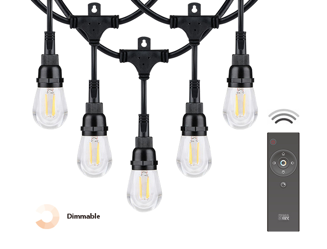 SMAlux remote control LED string light