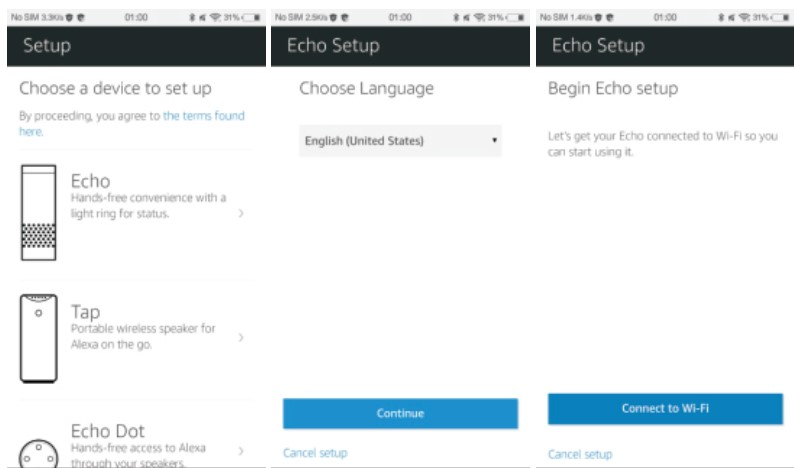Setup Echo Language