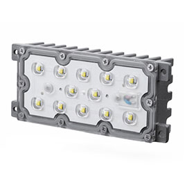 FLG-25-30WM Gym Flood Light