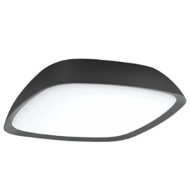 WL-201IP-20W Outdoor Wall Light